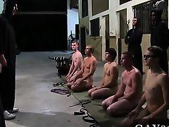 Nude men This week\'s HazeHim subordination winners got a lit