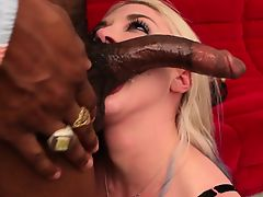 Leya Falcon intorduced SLink Andrews then takes his load in