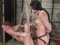 Hot And Submissive Babes Play BDSM Games
